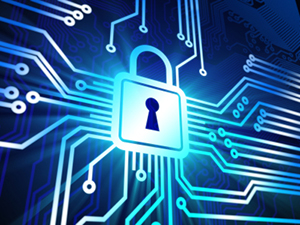 The Importance of Cyber-Security